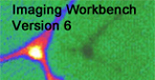 imaging workbench 5.0